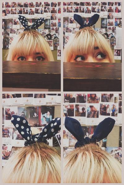 Hair band bunny