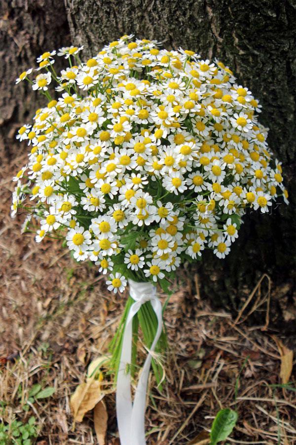Wedding-Florst-Daisy